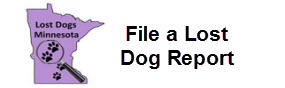 File a Lost Dog Report